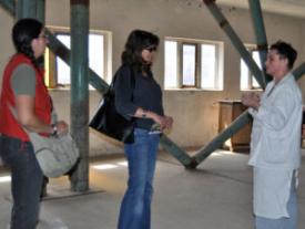 Umwandlungsbüro - saisonale performative Kunstaktion 2011 Wolfshagen